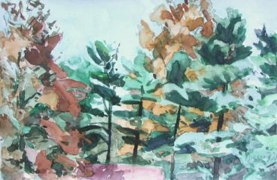 1978 Autumn Patterns_4-75x7-25_wc_7106