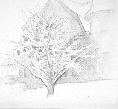 1993 Snow Lace II_8-75x9-75_pencil_1168