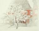 1993 Snow Lacemedium_1167