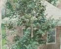 1979 Back Window_11-5x11-5in_wc_7206
