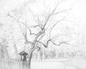 1999 Park Overture_22-5x30 in_pencil_1733